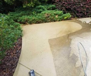 concrete paver in a garden being washed