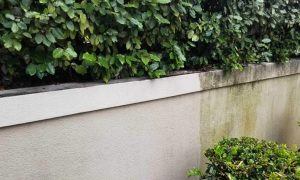 wall before and after pressure cleaning